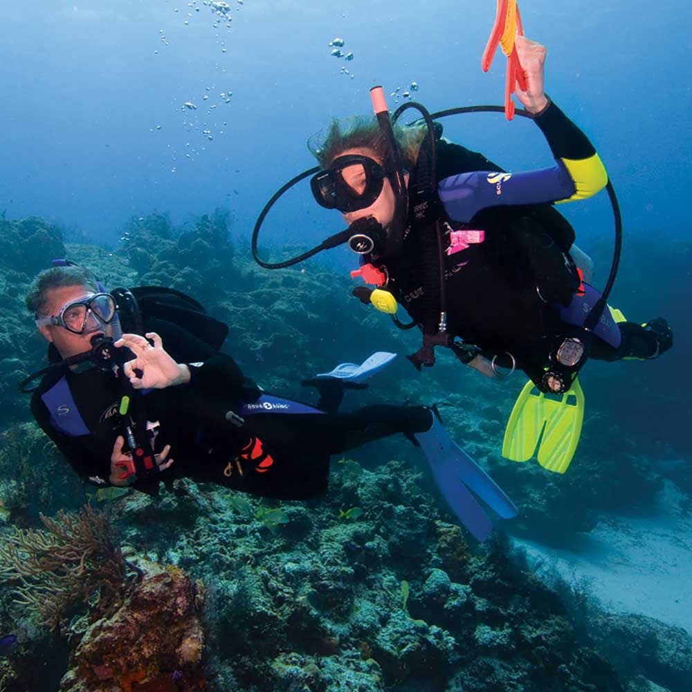 Padi drift diver specialty course scuba diving in miami fl padi drift diver specialty course 1betcityfo Gallery