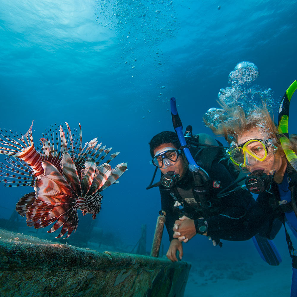 PADI Invasive LionFish Tracker Specialty Course