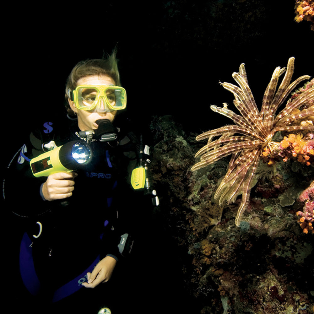 Padi night diver specialty course scuba diving in miami fl padi night diver course specialty course 1betcityfo Gallery