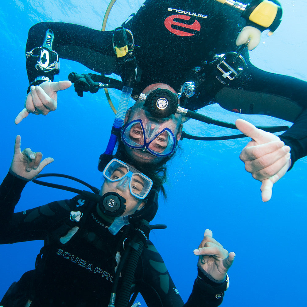 Padi Open Water Diver Course Scuba Diving In Miami Fl Best