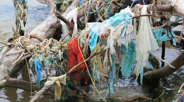 Nylon and Acrylic Microfibers from Clothing are Polluting Our Oceans