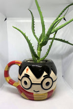 Load image into Gallery viewer, Harry Potter Succulent