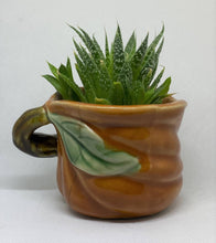 Load image into Gallery viewer, Antique Frog on leaf creamer succulent