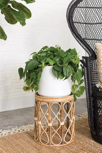 Rattan Plant Table