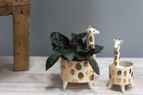 Giraffe Planter, Set of 2