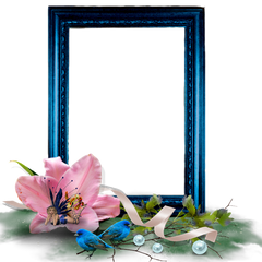 Framing Services by Art Images