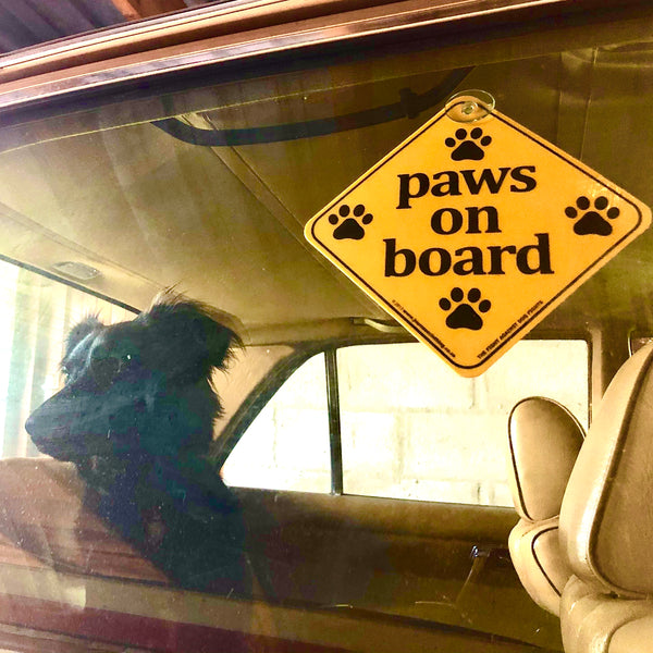 Paws on Board Sign