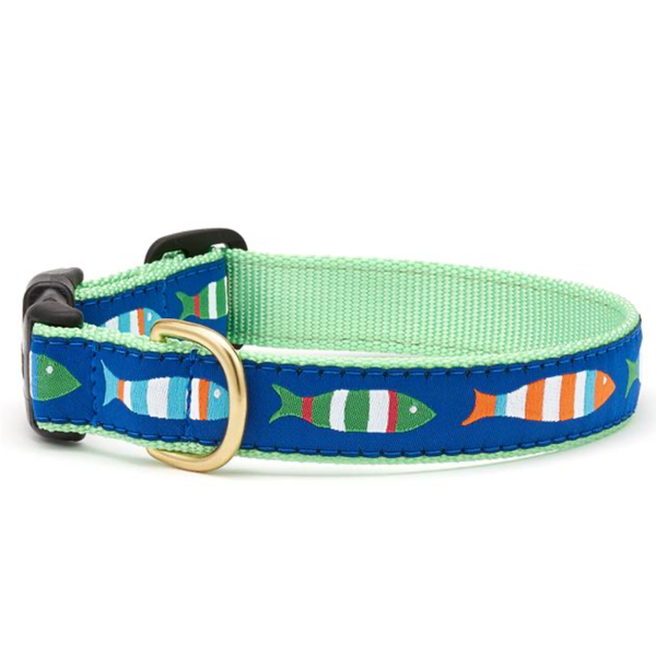 Funky Fish Dog Collar