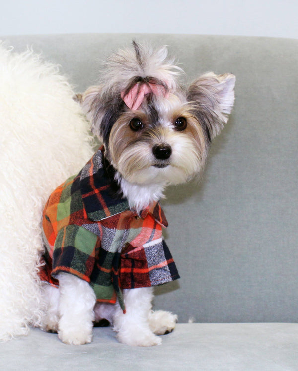 Harvest Flannel - Matching Sizes for Dogs + Humans