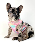 French Bulldog Harness | Versatile Health Harness | UniPup