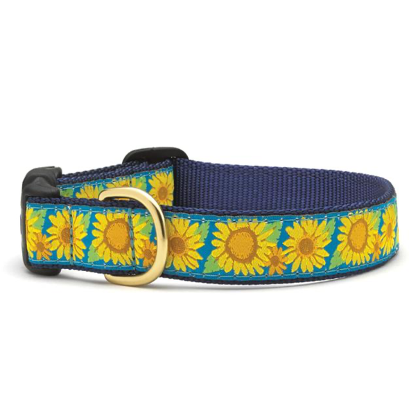 Bright Sunflower Dog Collar