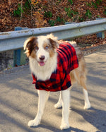 Great Plains Flannel - Matching Sizes for Dogs + Humans