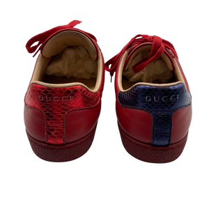 Gucci Red Ace Sneakers