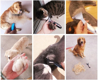 Dog and Cat Pet Hair Removal Tool - Me pets goods