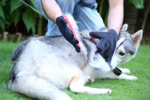 Pet Hair Removing Glove