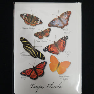Butterflies Tampa FL card