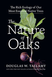Book - Nature of Oaks