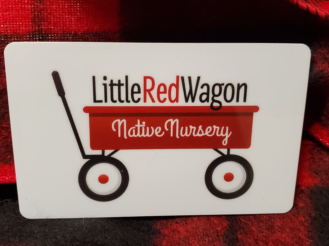 Little Red Wagon Gift Card
