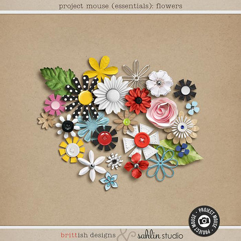 Project Mouse (Essentials): Flowers