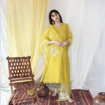 Load image into Gallery viewer, Ochre Organza Dupatta