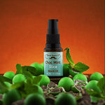 Load image into Gallery viewer, Choc Mint Slice - 15ml