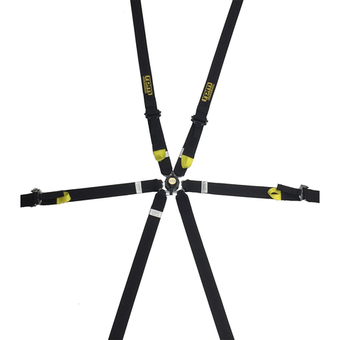 RPM 6 Point 2X2 Harness
