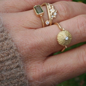 Sea Urchin Shell Ring