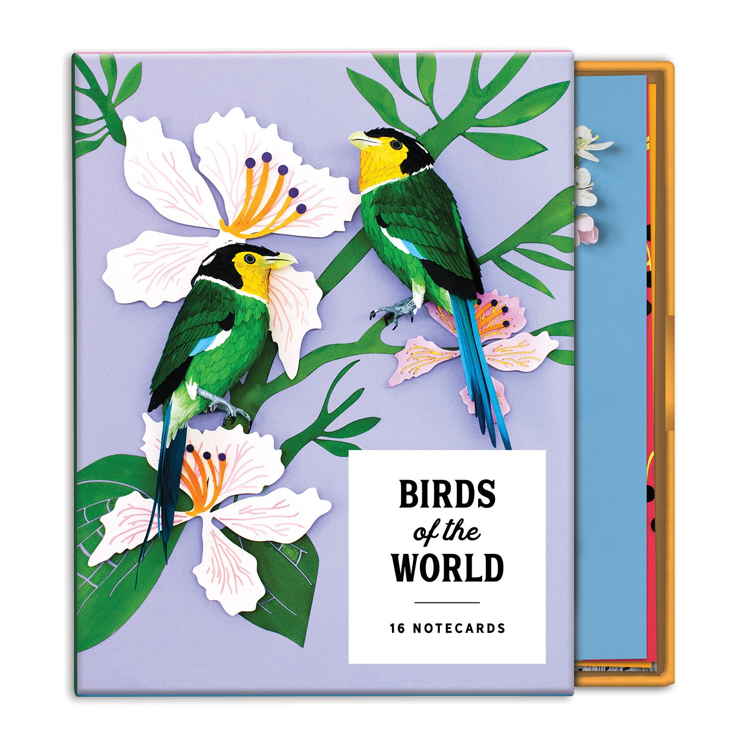 Birds Of The World Greeting Assorted Notecard Sets