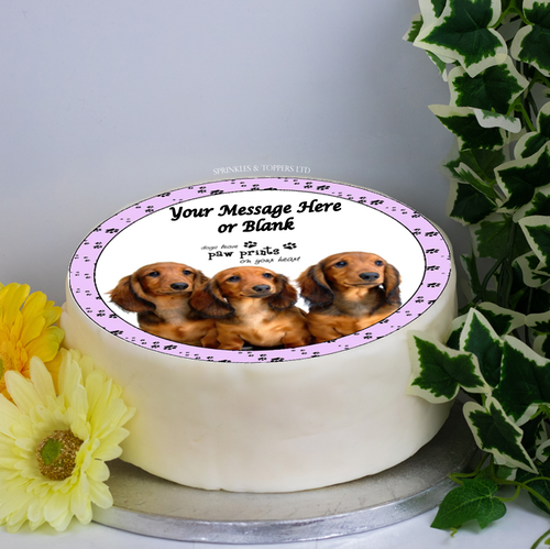 Personalised Dachshund Puppies Scene 8