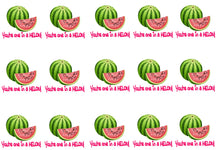 Load image into Gallery viewer, You're One In a Melon Edible Icing Cake Ribbon / Side Strips