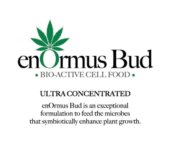 enOrmus Bud | Bio-active cell food 100ml