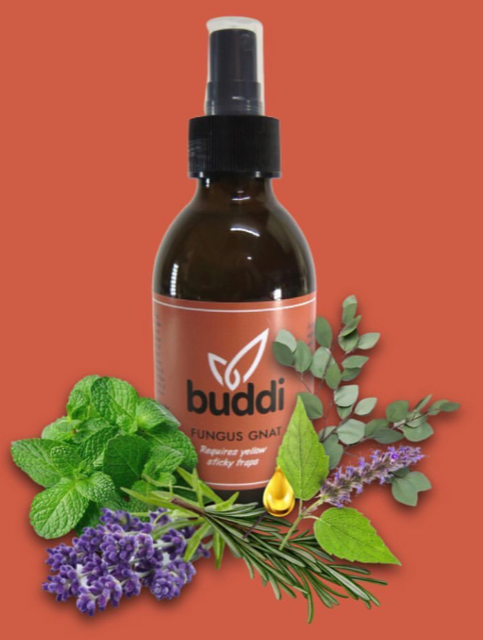 Buddi Organic Pest Control Spray | Fungus Gnats 200ml\500ml