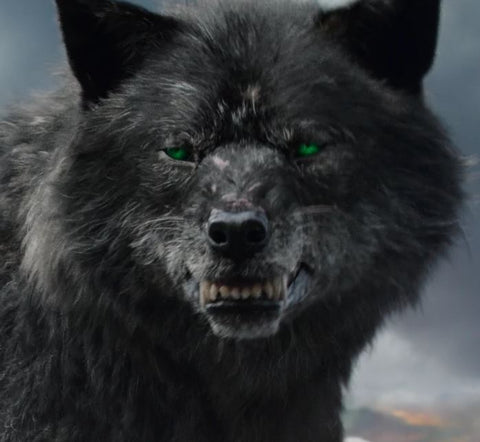 Fenrir is not amused