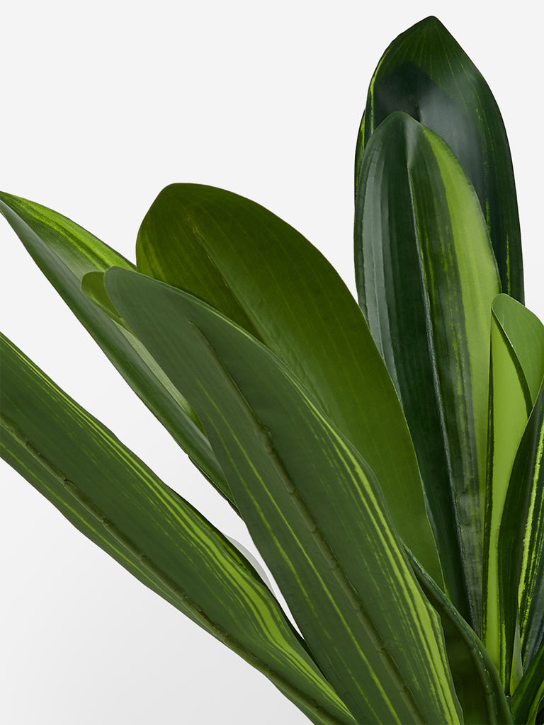 Westside Home Green Artificial Dracaena Lemon Lime Plant