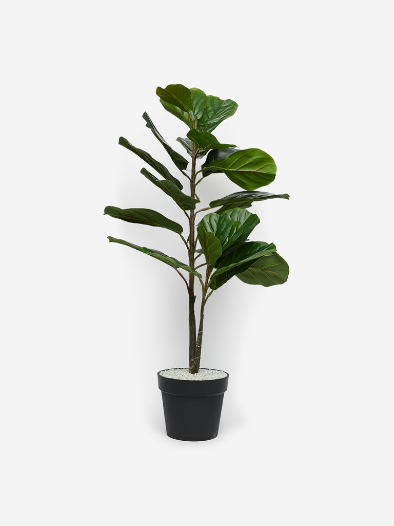 Westside Home Green Artificial Medium Fiddle-Leaf Fig Plant