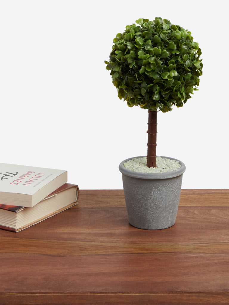 Westside Home Green Artificial Box Wood Plant