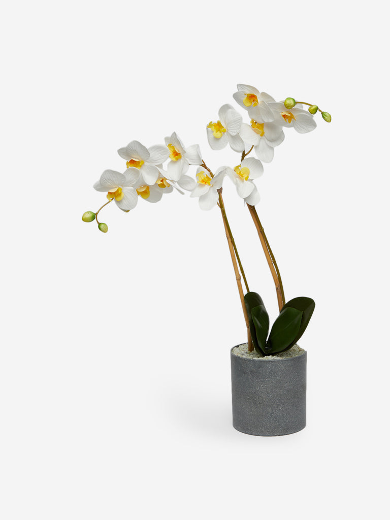 Westside Home White Artificial Flower