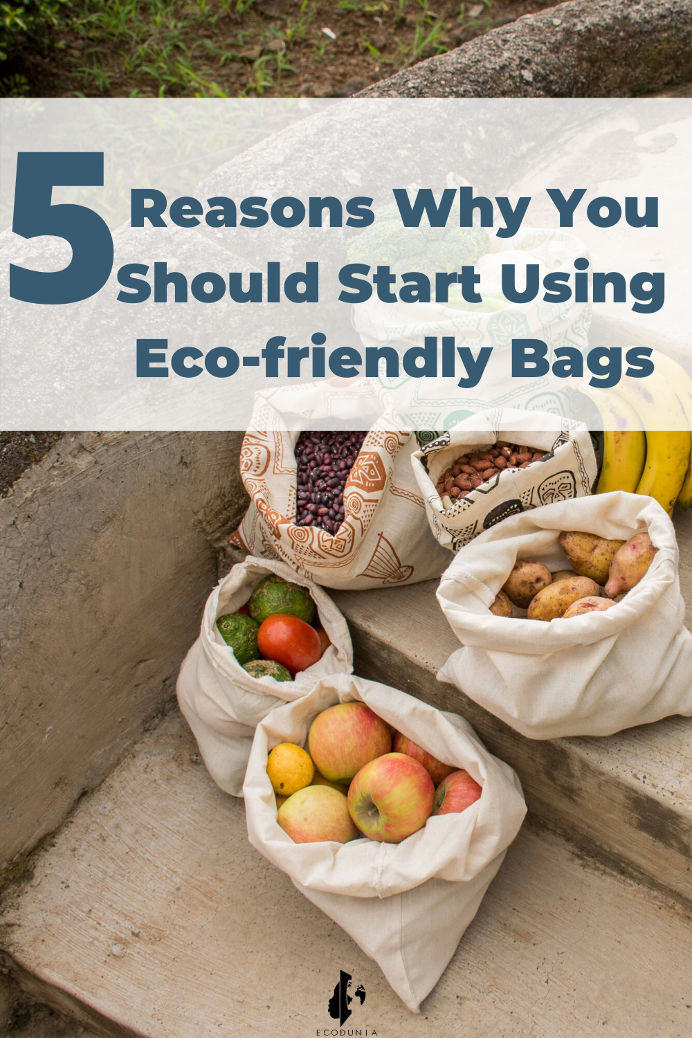 5 Reasons Why You Should  Start Using Eco-Friendly Bags