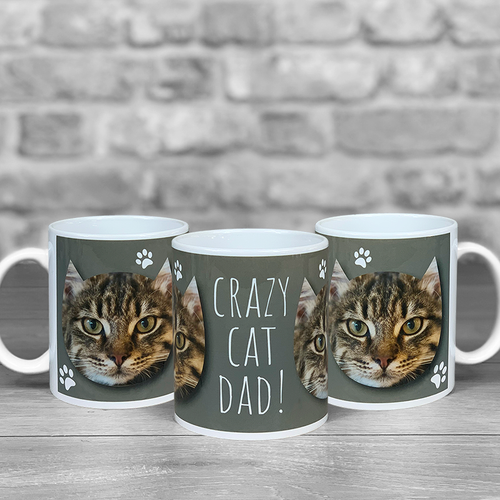 Crazy Cat Dad Personalised Photo Mug