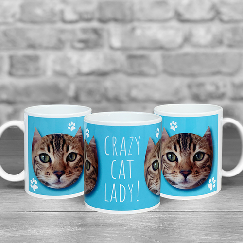Crazy Cat Lady Personalised Photo Mug