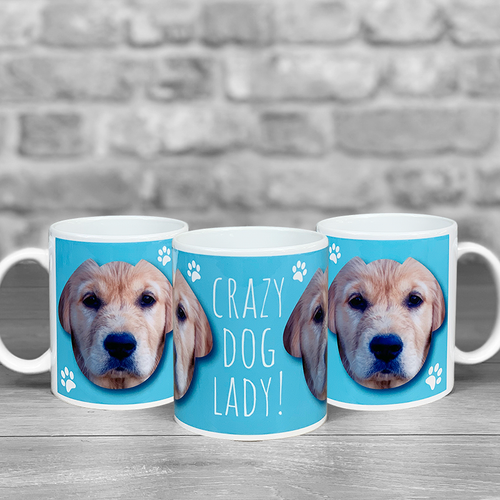 Crazy Dog Lady Personalised Photo Mug