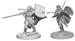 Pathfinder Deep Cuts Unpainted Miniatures: W1 Human Female Paladin