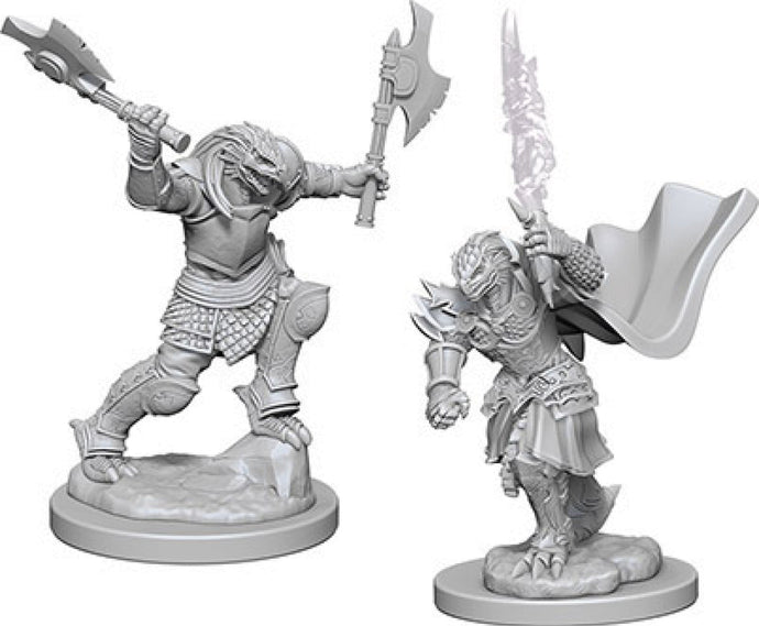 Dungeons & Dragons Nolzur`s Marvelous Unpainted Miniatures: W4 Dragonborn Female Fighter