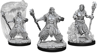 Dungeons & Dragons Nolzur`s Marvelous Unpainted Miniatures: W5 Water Genasi Male Druid