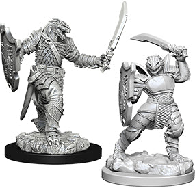 Dungeons & Dragons Nolzur`s Marvelous Unpainted Miniatures: W5 Dragonborn Female Paladin