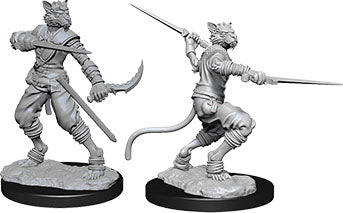 Dungeons & Dragons Nolzur`s Marvelous Unpainted Miniatures: W7 Tabaxi Male Rogue