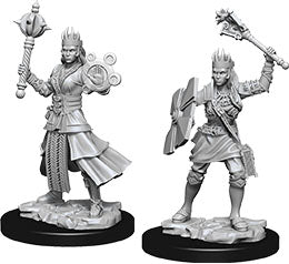 Dungeons & Dragons Nolzur`s Marvelous Unpainted Miniatures: W8 Female Human Cleric