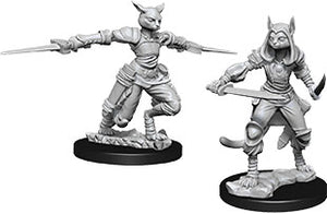 Dungeons & Dragons Nolzur`s Marvelous Unpainted Miniatures: W9 Female Tabaxi Rogue