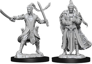 Dungeons & Dragons Nolzur`s Marvelous Unpainted Miniatures: W9 Male Elf Paladin