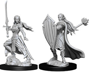 Dungeons & Dragons Nolzur`s Marvelous Unpainted Miniatures: W9 Female Elf Paladin